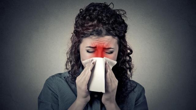 Háziporatka allergia okozza az állandó orrdugulást?