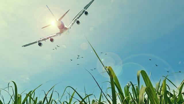 Az allergiások hajlamosabbak a repüléskor jelentkező füldugulásra