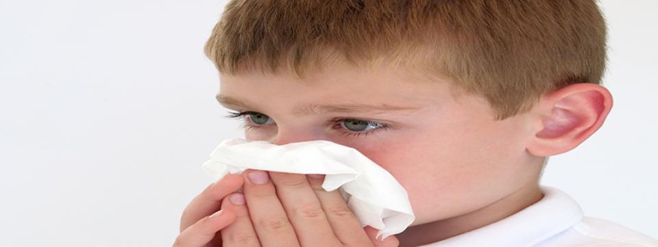 Allergiás nátha